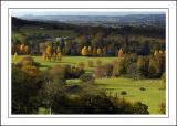 Longleat ~ golden parkland