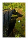Stourhead ~ bridge and ducks