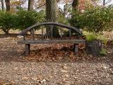 A Bench.jpg(294)