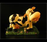 03.11.2004 ... Cow ...
