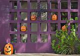 Pumpkins in windows