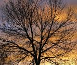 NM Sunrise (0608)
