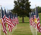Honoring fallen heroes on Veterans Day