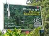 Rain forest tram ride