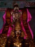 Vayalali Manavalan in Garuda vahanam.JPG