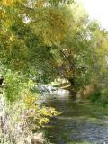 Portneuf River in Lava Hot Springs autumn scene DSCN5359