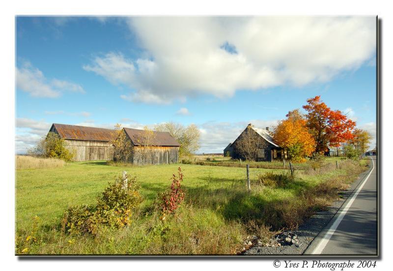 Rural ...