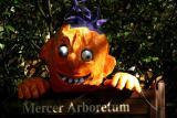 Mercer101403-026PSEWp.jpg