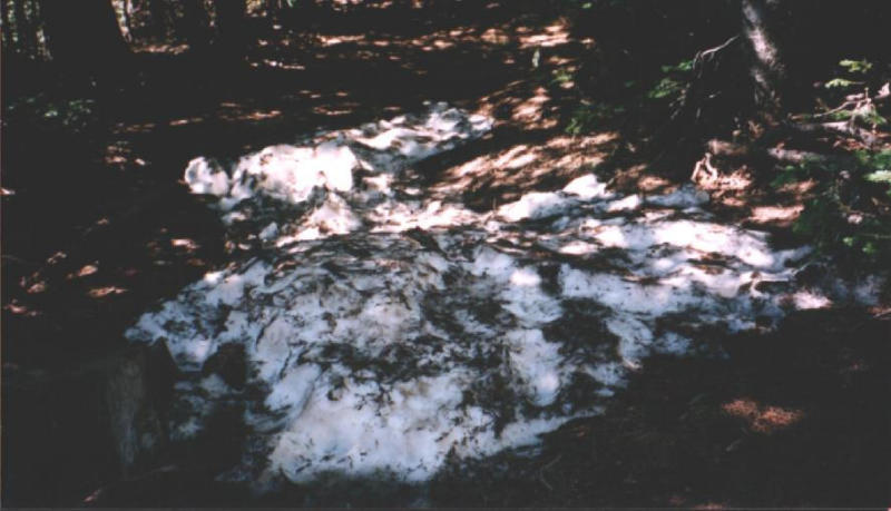 Snow still lingers in late May at 10,000 feet