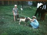 Jamaica kimo and Phillis playing with our supper the goat.