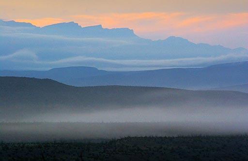 Dawn Mist 6631