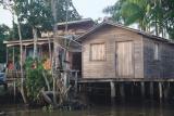 Amazon home with a satelite dish