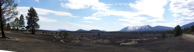 Cinder Field south of Sunset Crater
