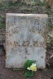 Wichita Falls Bank Robbery of 1896 bank robbers buried together