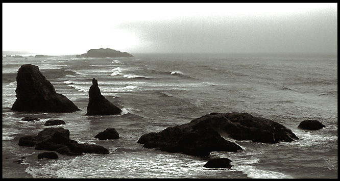 Oregon Shore