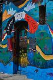 city lights bookstore celebrates the struggle in Chiapas