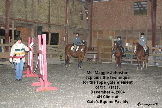 Maggie explains the Rope Gate.JPG