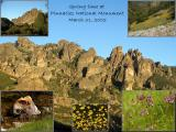 Spring time at Pinnacles National Monument