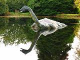 Nessie Reflection