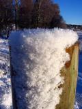Winter Fence Post