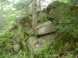 lichen-rocks.jpg