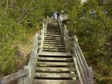 Going Up 02.jpg