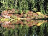 Reflection in Hope Lake