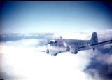 Gypsy bird above clouds