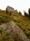 Fireweed and lookout<br>(photo &copy; Karen Sykes)</br>