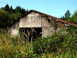 040815 Old Shed