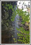 IMG_0835 - Keown Falls Close Up.jpg