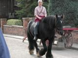 Girl On Horse - Blists Hill (556)