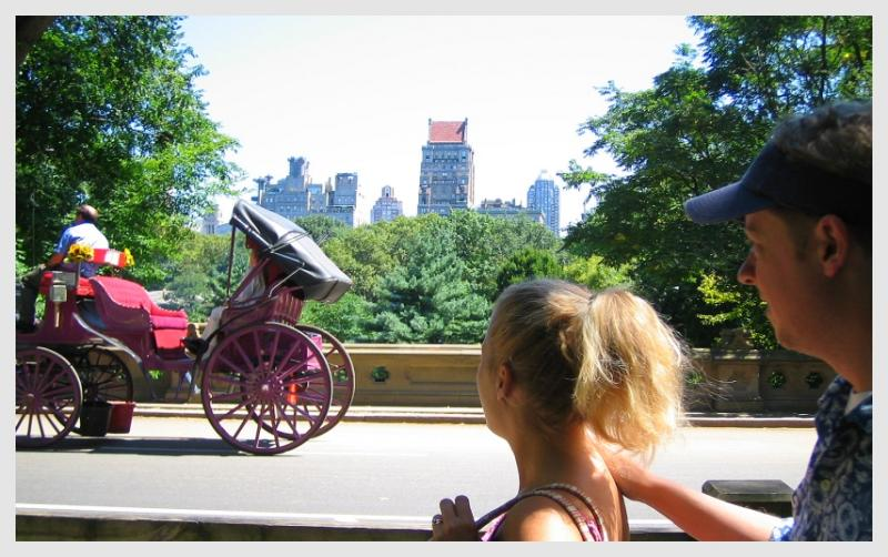 NYC carriage