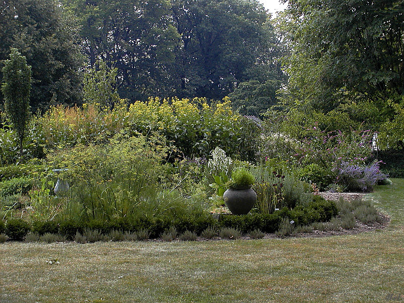 Garden corner.jpg(181)