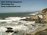 ocean shore1.jpg