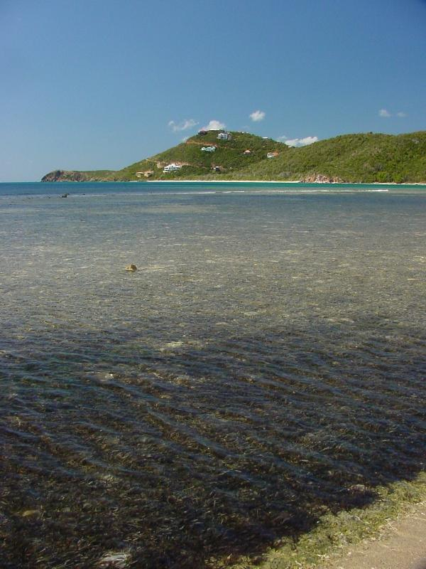 Looking back on Reef Bay from beyond Genti Bay.