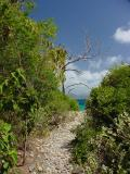Trail at Haulover