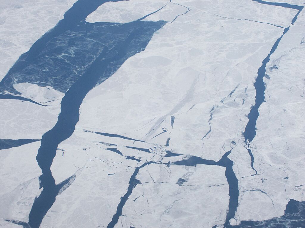 Ice Floes off Alaska
