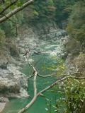 Iya Gorge, Karuza Marsh, Okuiya Kazurabashi & Kazurabashi (vine Bridge) and Jirogyu-yama & Tsurugi (Mountains)
