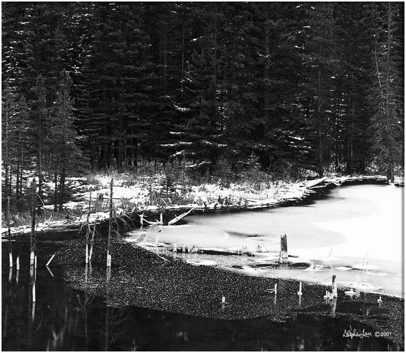 Beaver-Dam-BW16bit.jpg