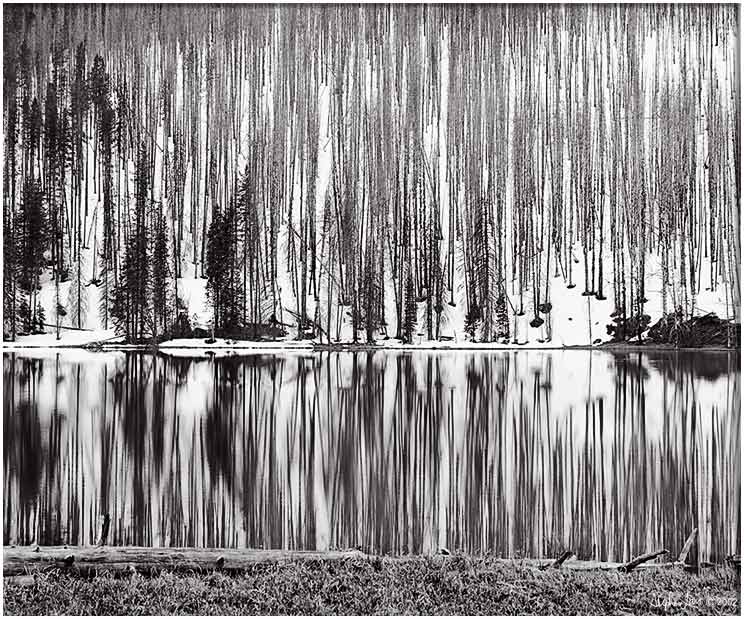 YStone-Reflection.jpg