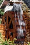 Water Wheel - Como Zoo