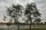 Cerritos Park 07