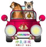 Smart Partner Doggie BROWN