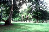 Lezama Park