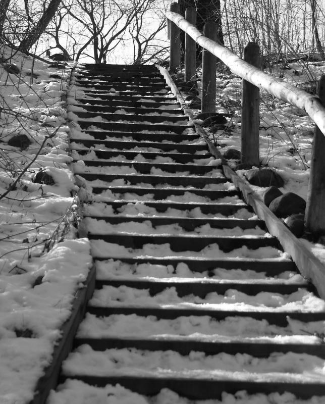 stairs (bw).jpg