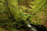 Afon Nedd Fechan near Pont Melin Fach