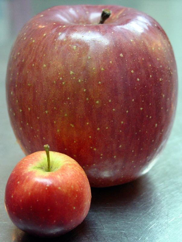Mutt and Jeff of the Apple World (Food Challenge)