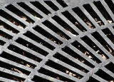 A Great Grate!