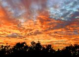 The End of a Great Day in Our Back Yard - West View